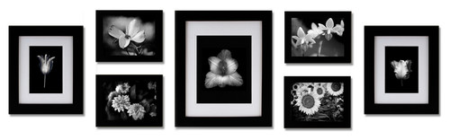 Black Photo and Artwork Frame Set